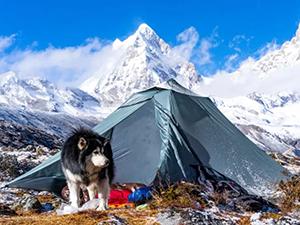 TFS Tents_pickup